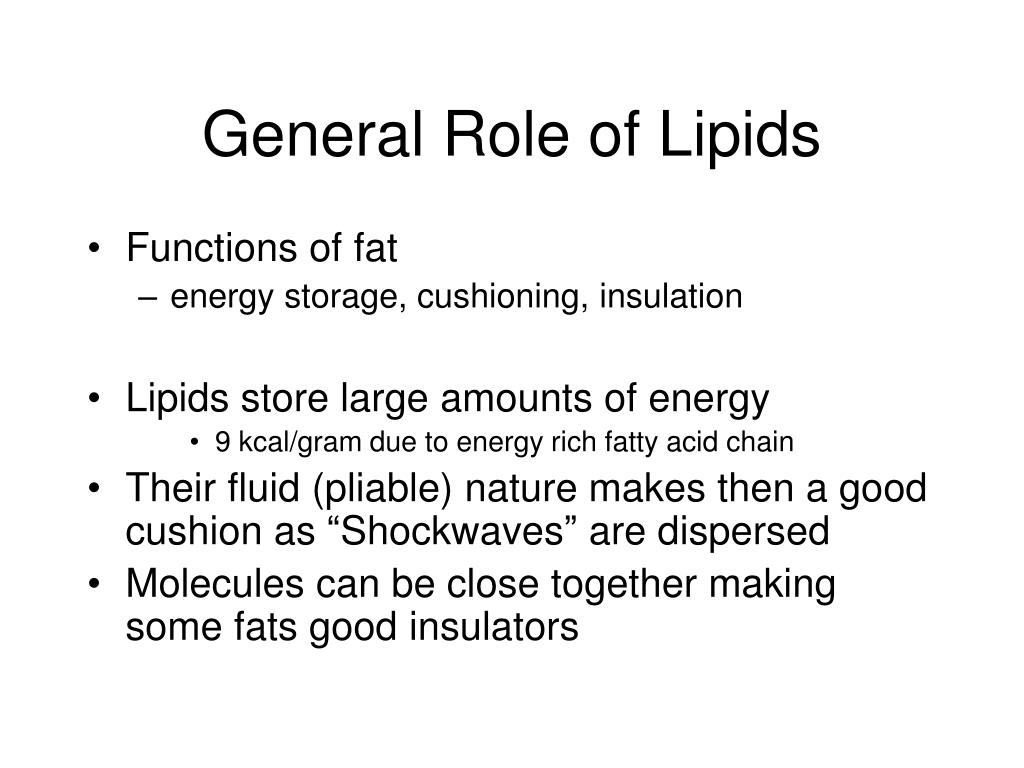 General Role of Lipids