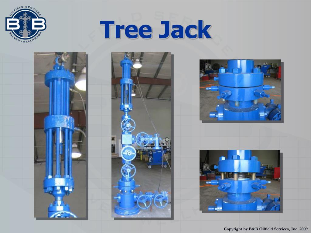 Tree Jack