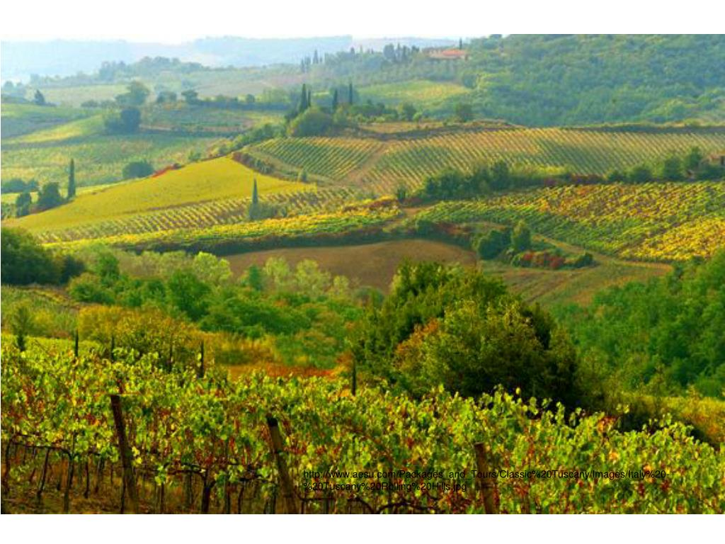 http://www.aesu.com/Packages_and_Tours/Classic%20Tuscany/Images/Italy%20-%20Tuscany%20Rolling%20Hills.jpg