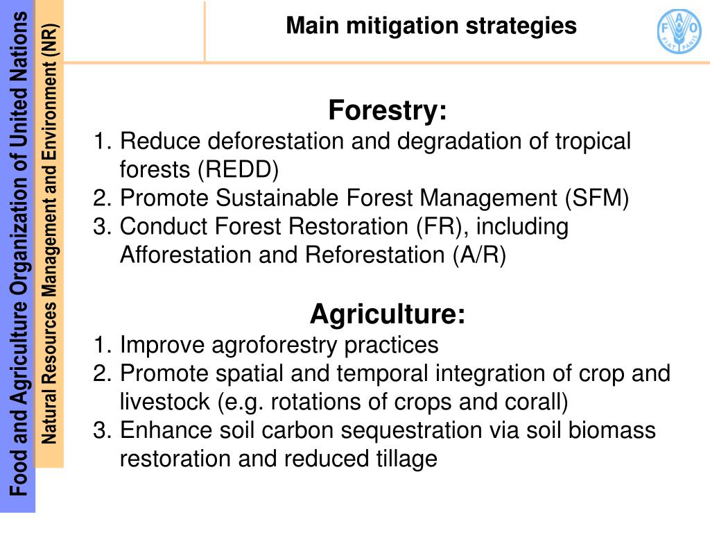 Main mitigation strategies