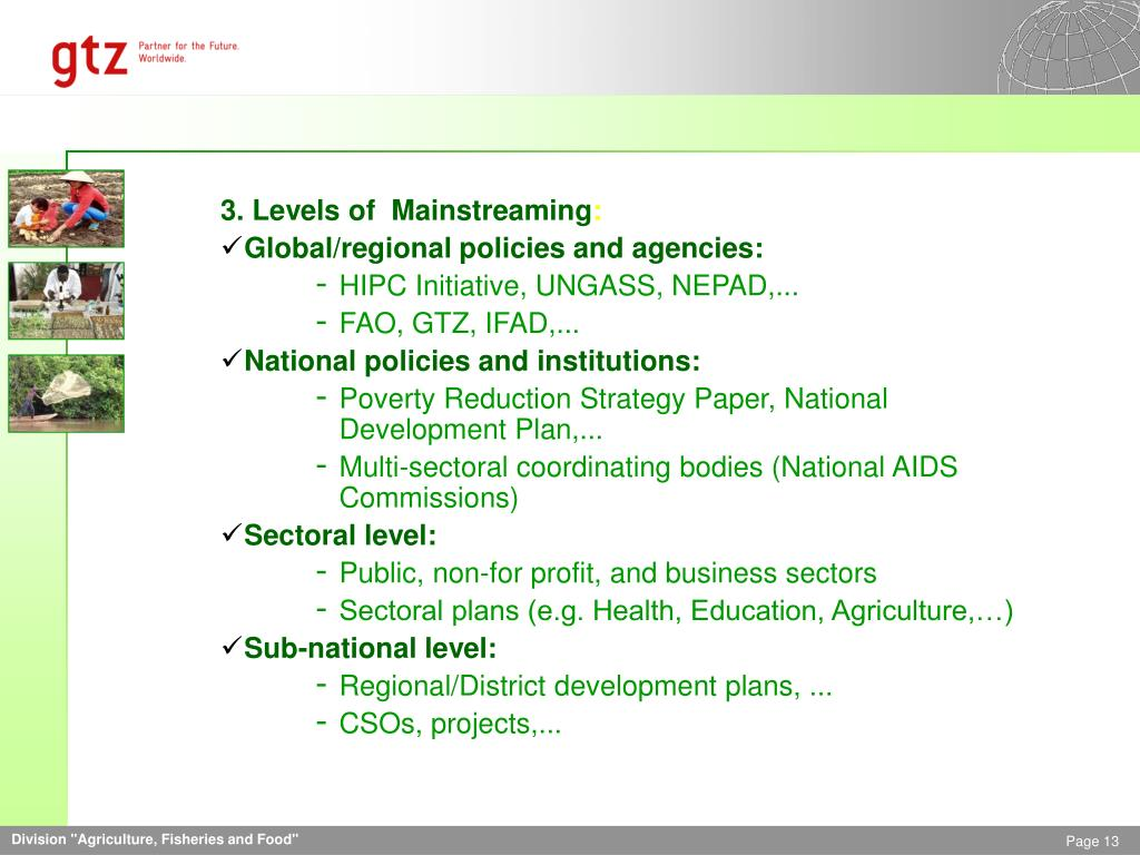 3. Levels of  Mainstreaming