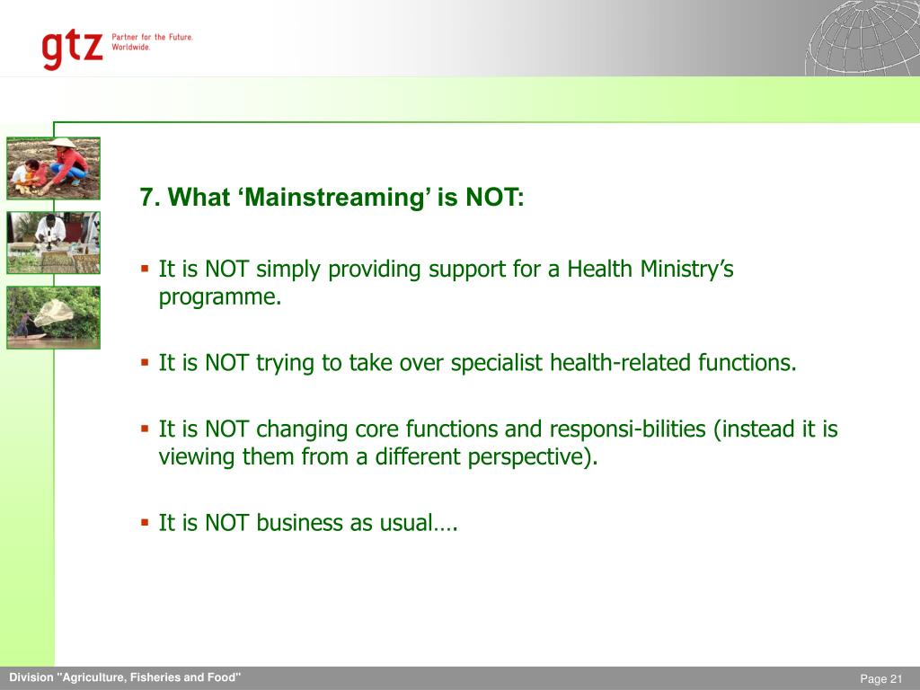 7. What 'Mainstreaming' is NOT: