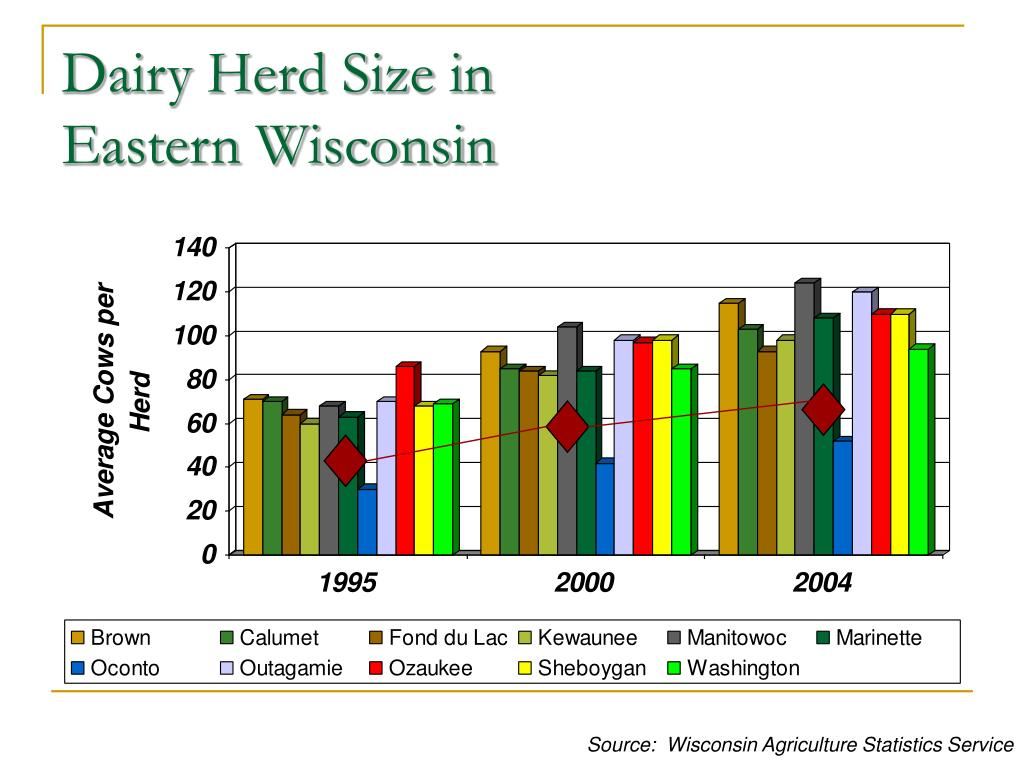 Dairy Herd Size in