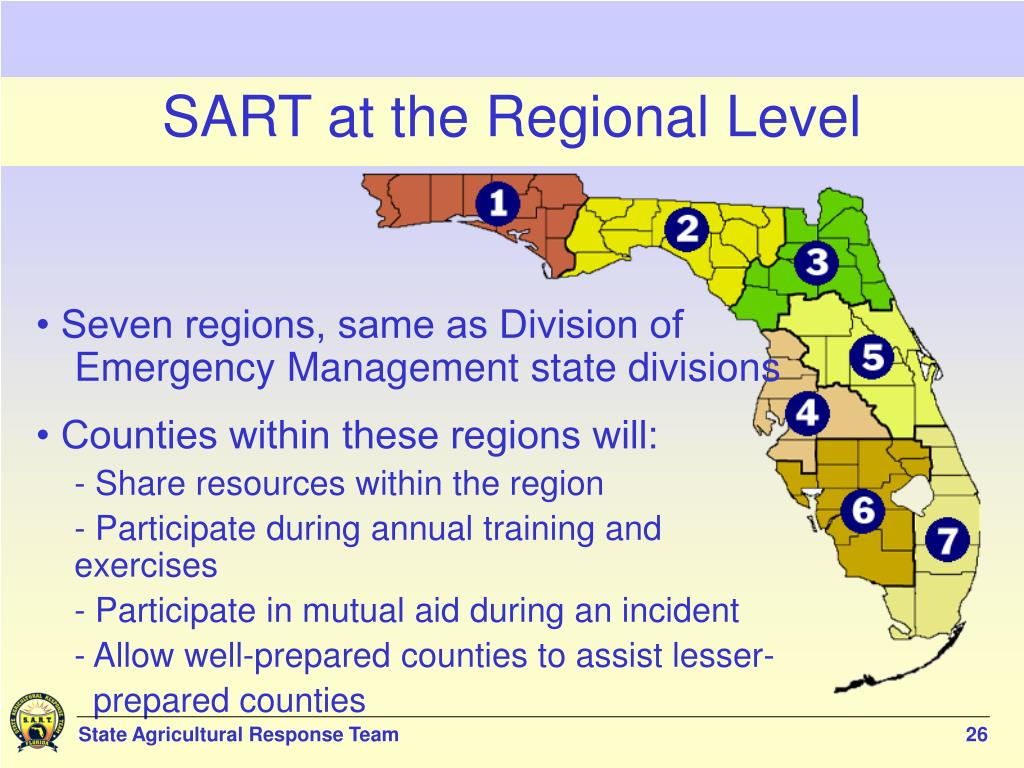 SART at the Regional Level