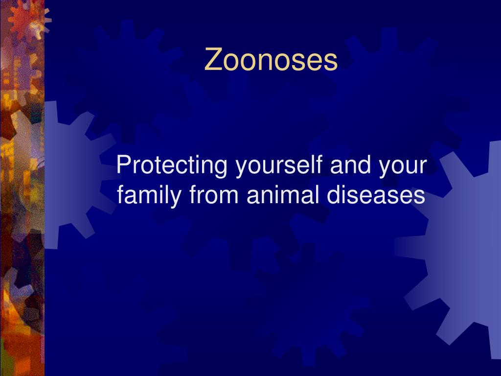 Protecting yourself and your family from animal diseases
