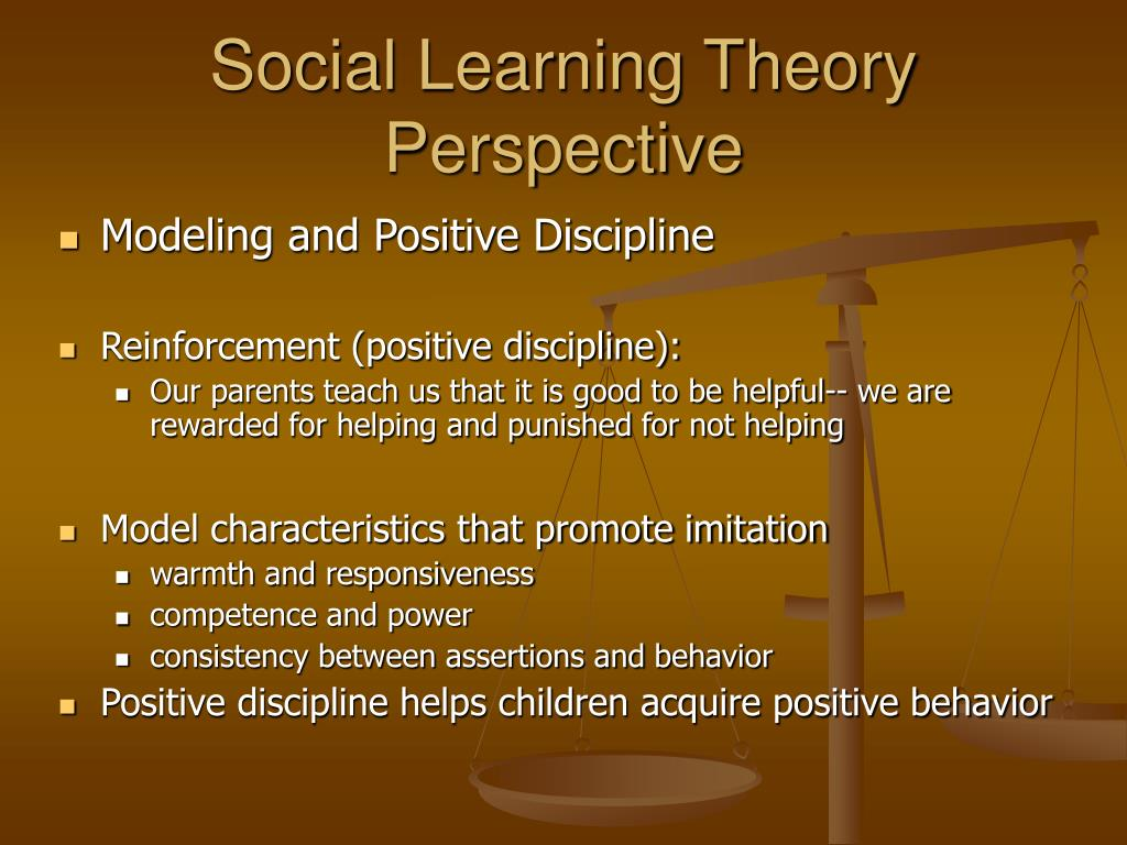 Social Learning Theory Perspective