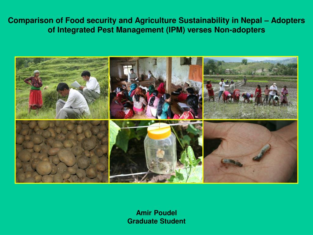 Comparison of Food security and Agriculture Sustainability in Nepal – Adopters of Integrated Pest Management (IPM) verses Non-adopters
