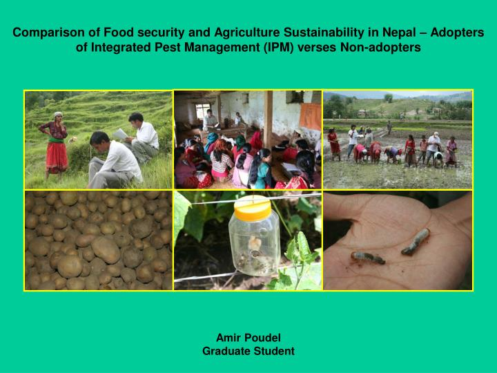 Comparison of Food security and Agriculture Sustainability in Nepal – Adopters of Integrated Pest ...