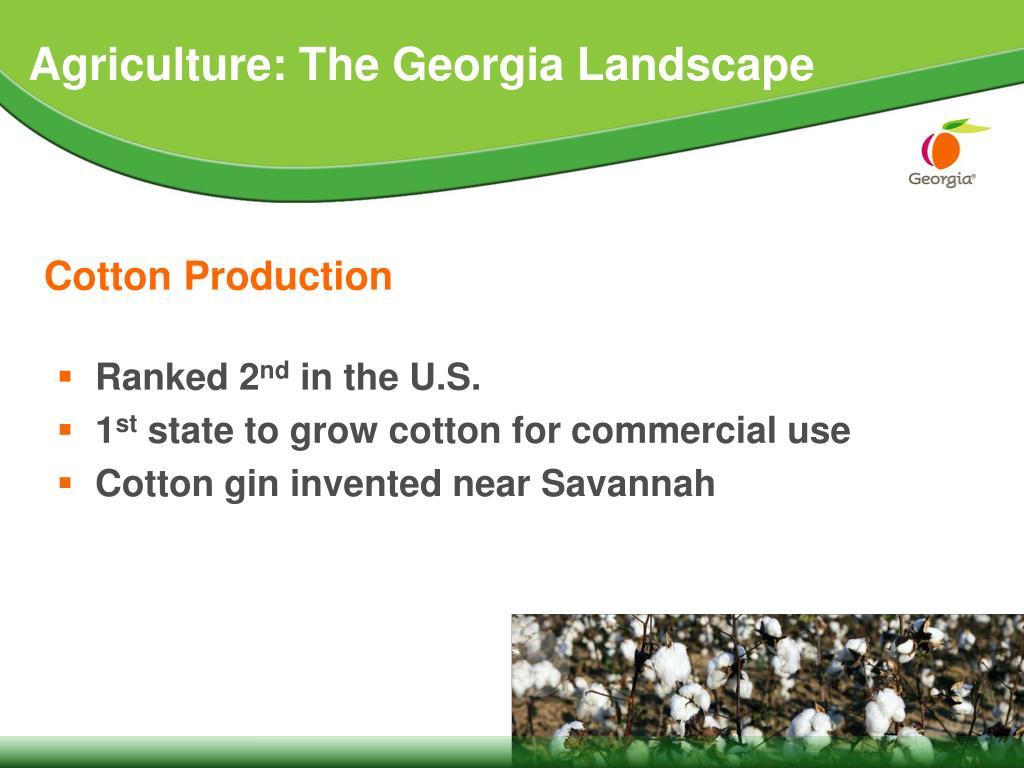 Agriculture: The Georgia Landscape