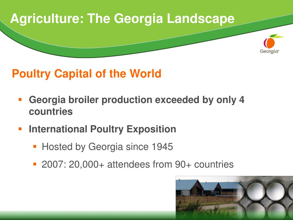 Georgia broiler production exceeded by only 4 countries