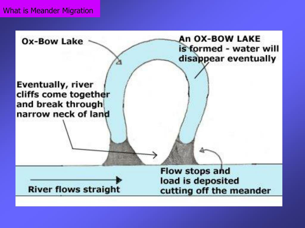What is Meander Migration