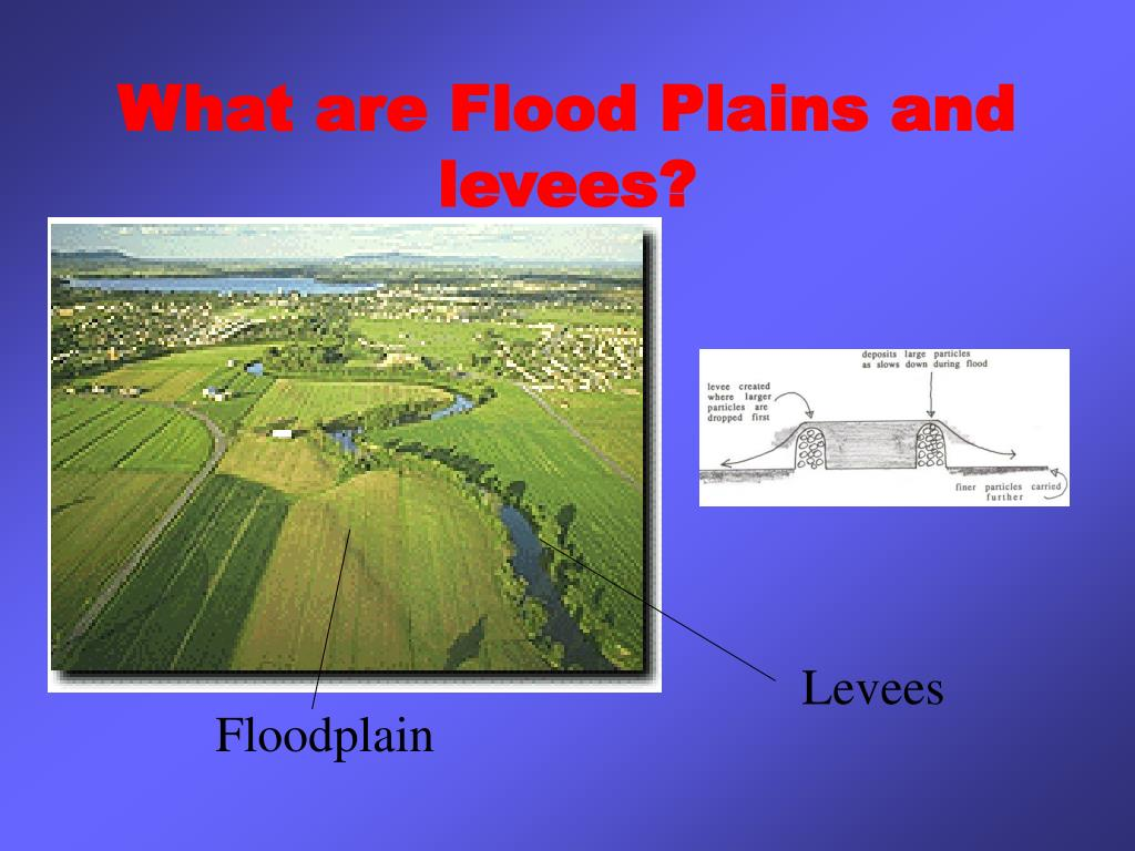 What are Flood Plains and levees?