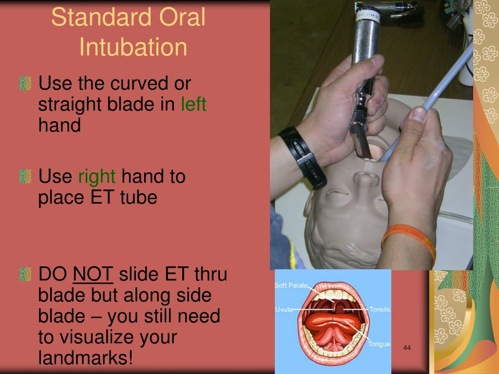 Standard Oral