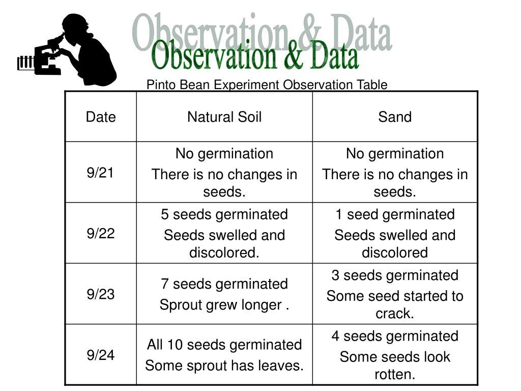 Observation & Data