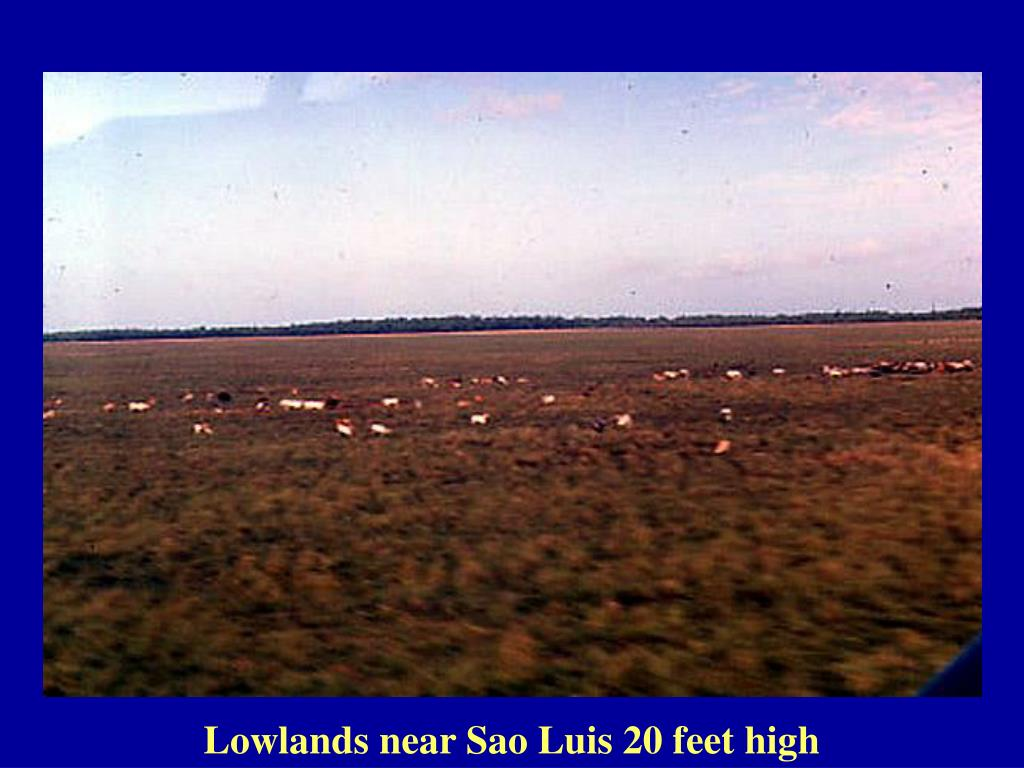 Lowlands near Sao Luis 20 feet high