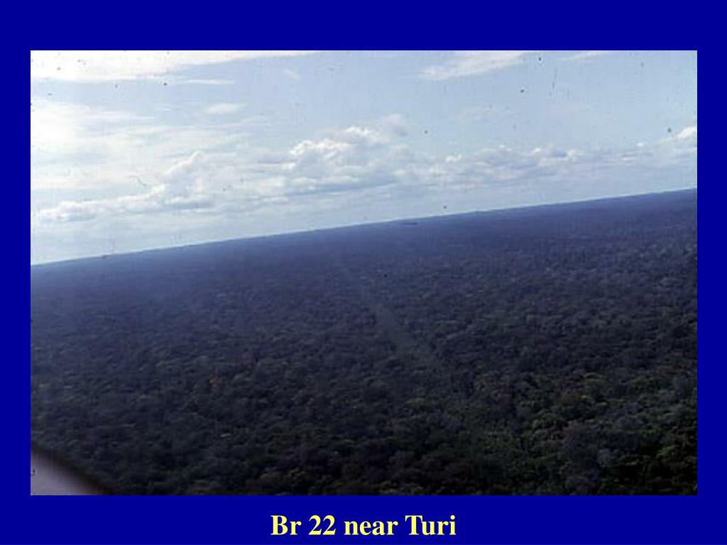 Br 22 near Turi