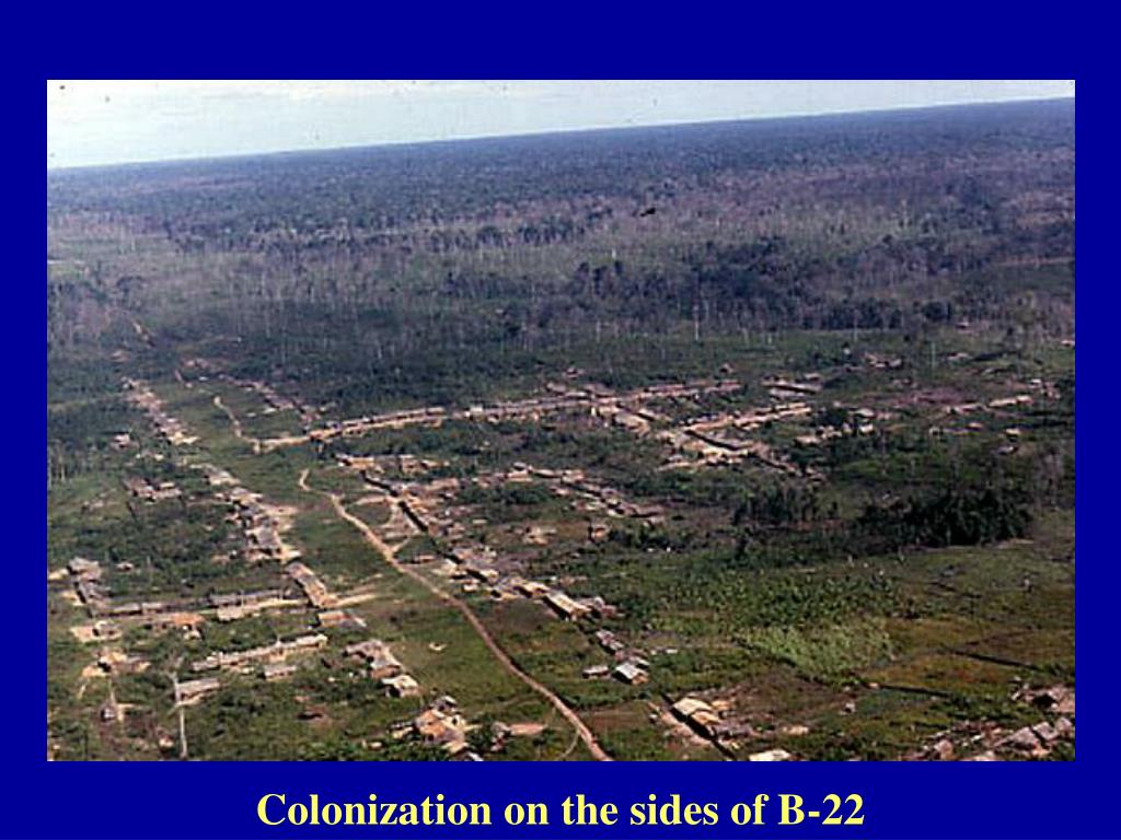 Colonization on the sides of B-22