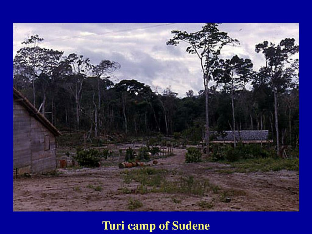Turi camp of Sudene