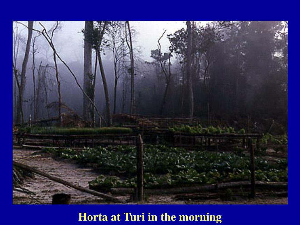 Horta at Turi in the morning