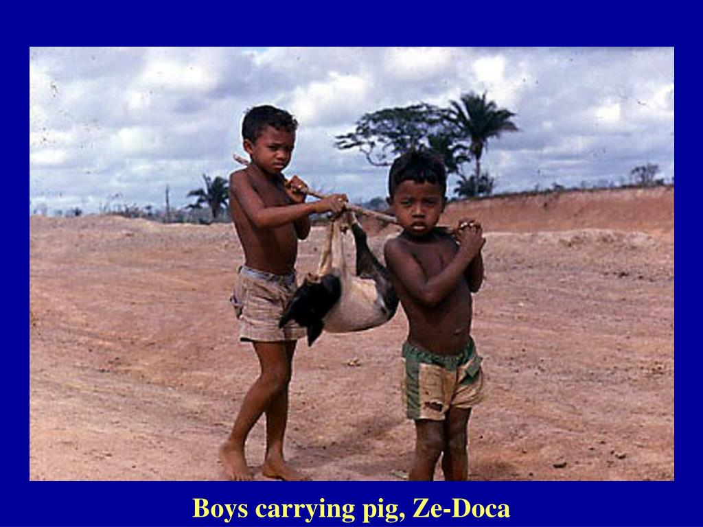 Boys carrying pig, Ze-Doca
