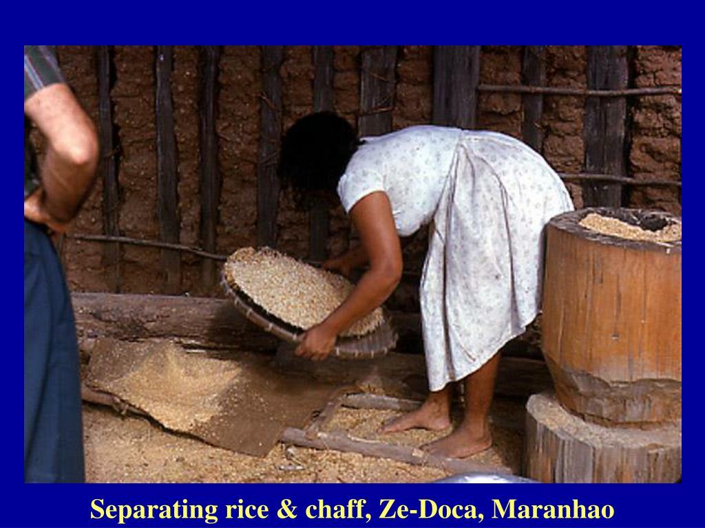 Separating rice & chaff, Ze-Doca, Maranhao