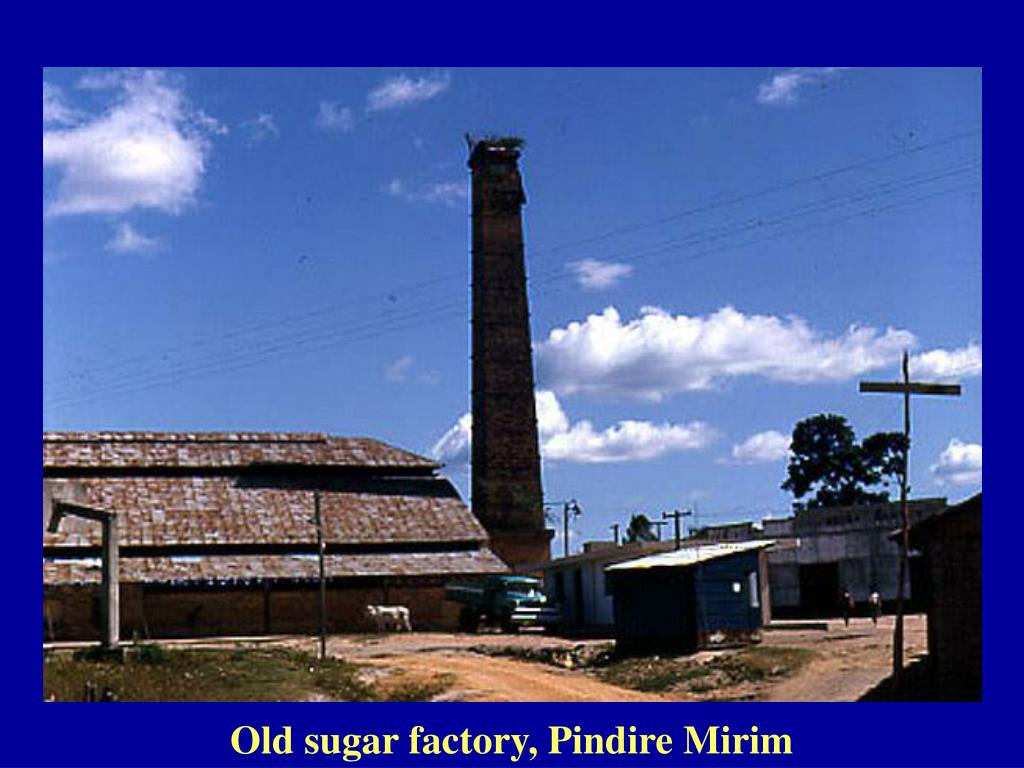 Old sugar factory, Pindire Mirim