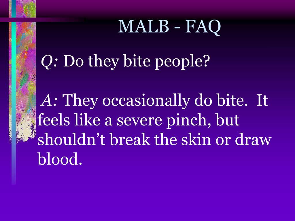 MALB - FAQ