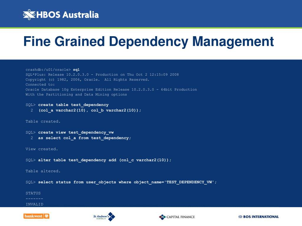 Fine Grained Dependency Management