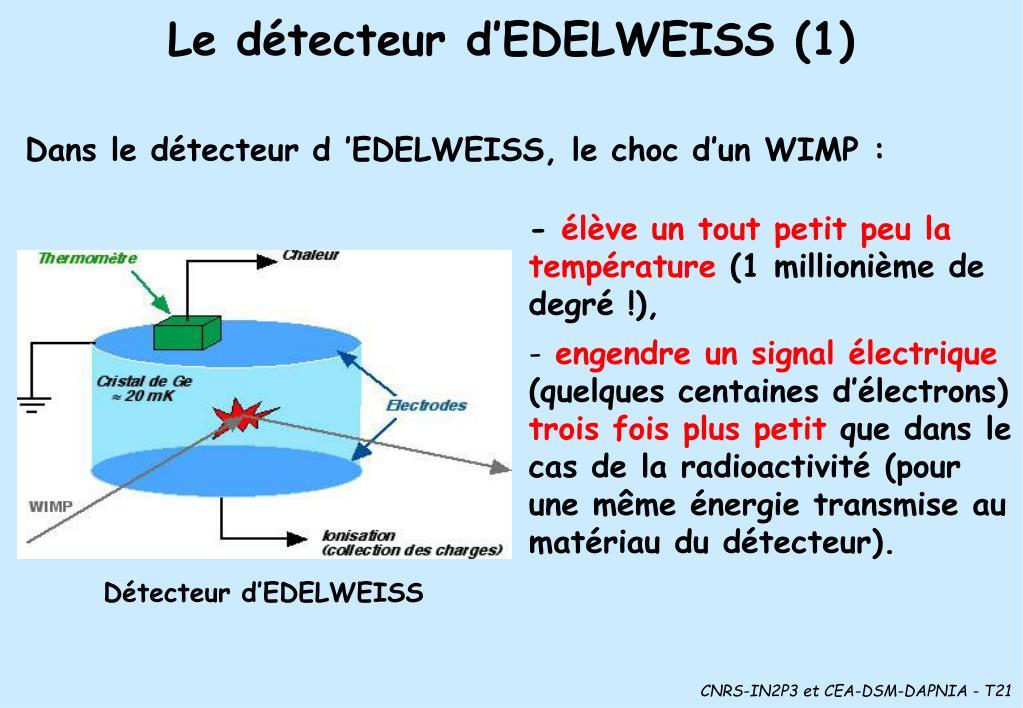 Le détecteur d'EDELWEISS (1)