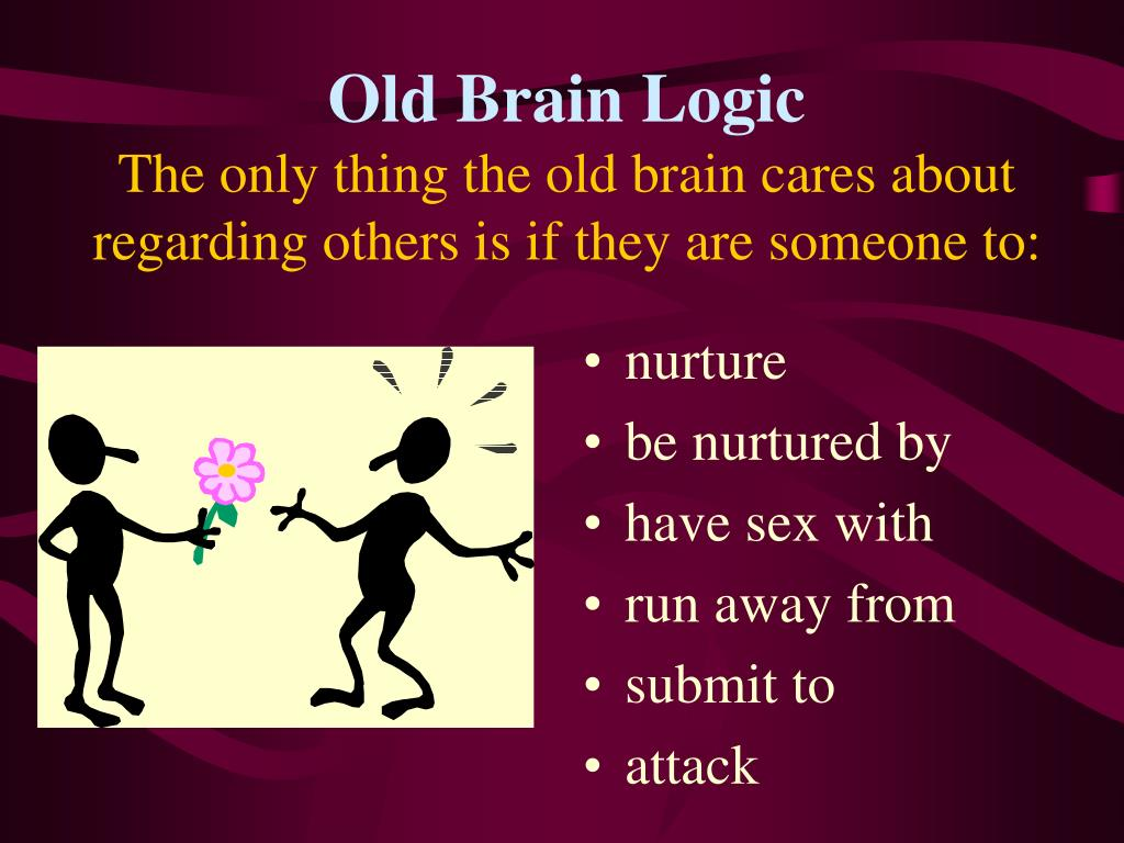 Old Brain Logic