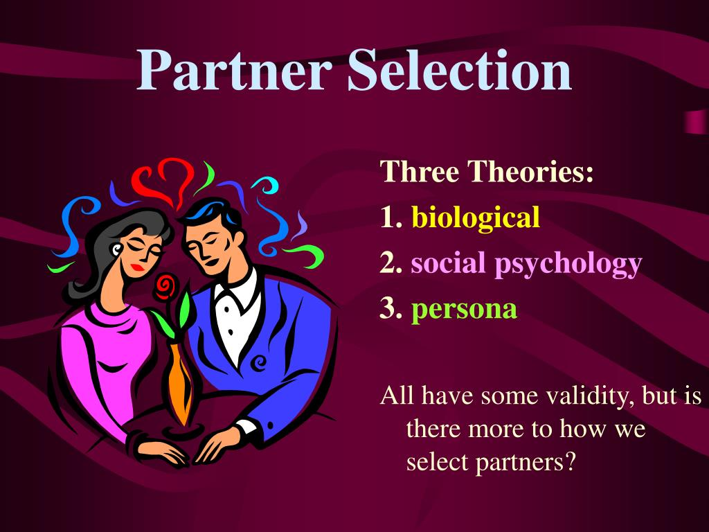Partner Selection