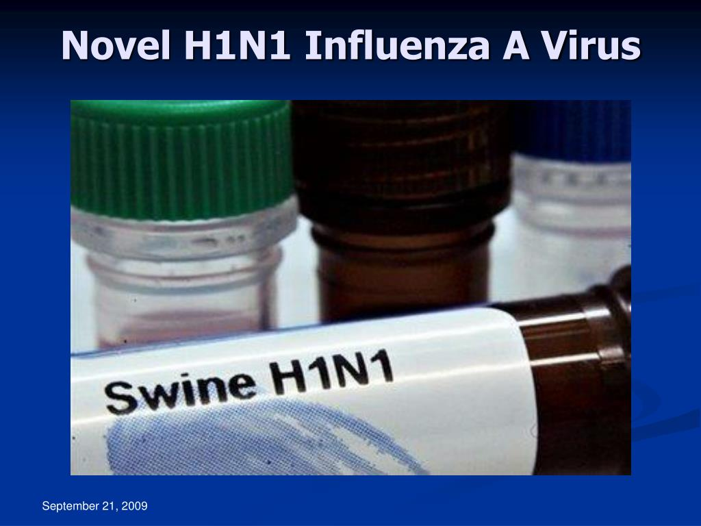 Novel H1N1 Influenza A Virus