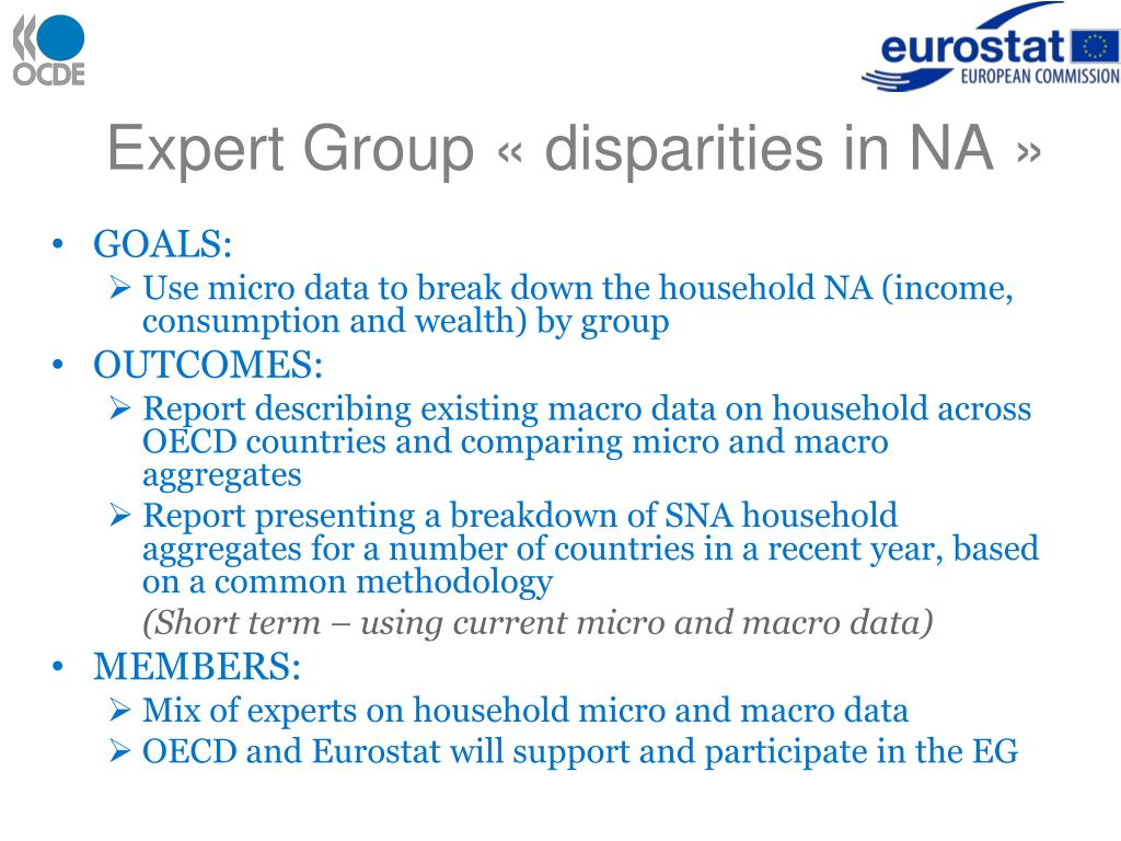 Expert Group «disparities in NA»
