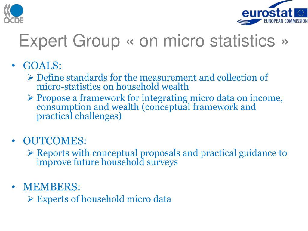 Expert Group «on micro statistics»