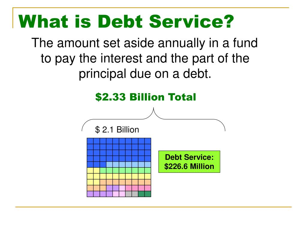 What is Debt Service?