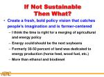 if not sustainable then what27