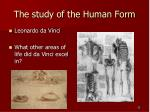 the study of the human form