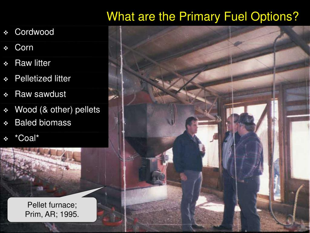 What are the Primary Fuel Options?