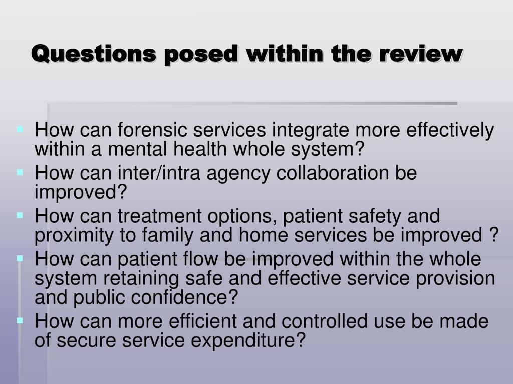 Questions posed within the review