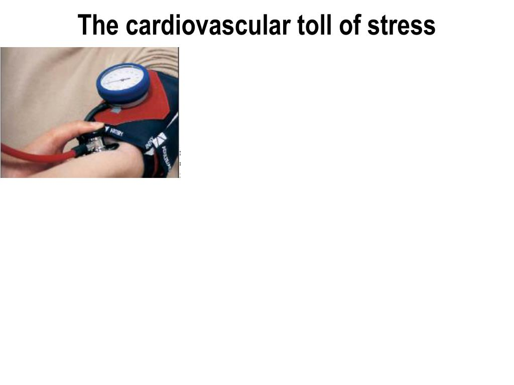 The cardiovascular toll of stress