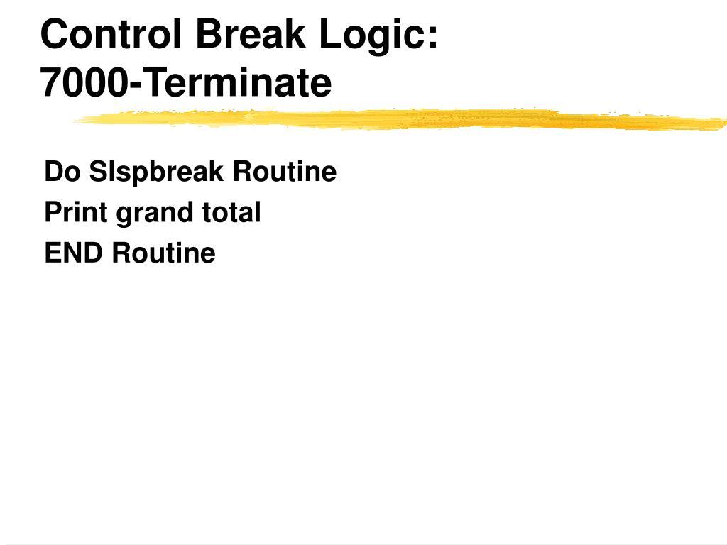 Control Break Logic: