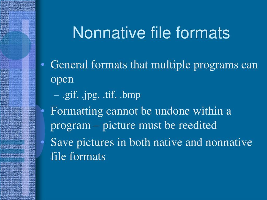 Nonnative file formats