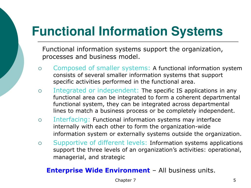 Functional Information Systems