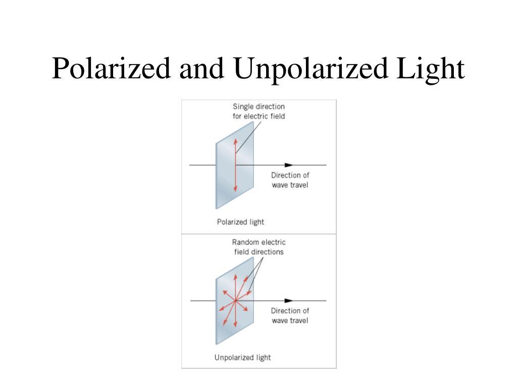Polarized and Unpolarized Light