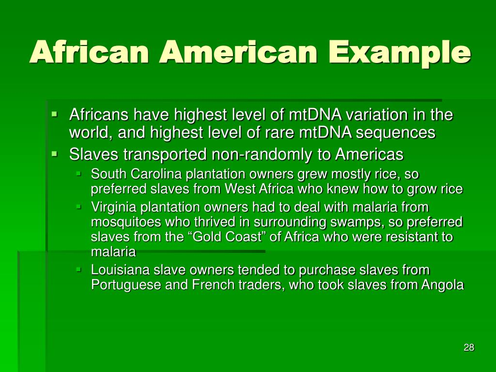 African American Example
