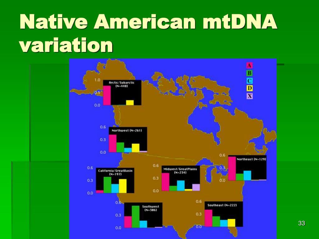 Native American mtDNA variation