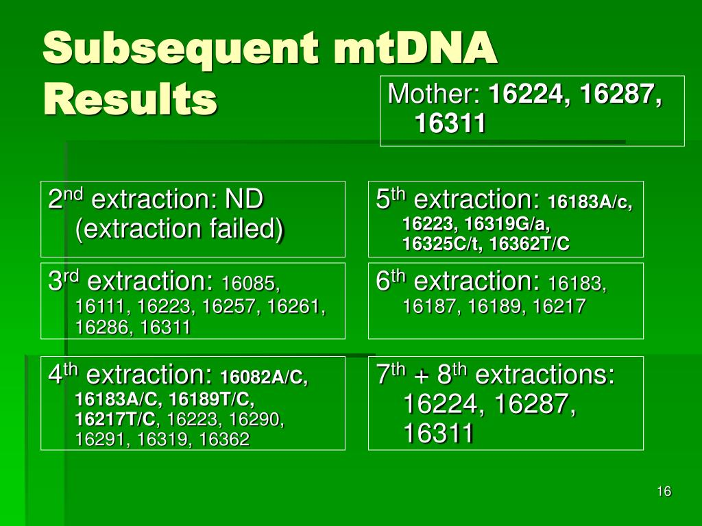 Subsequent mtDNA Results