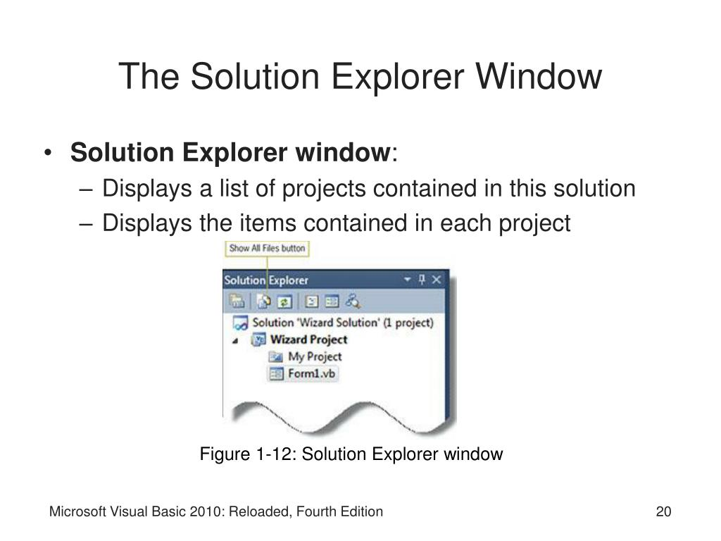 The Solution Explorer Window