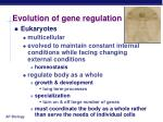 evolution of gene regulation4