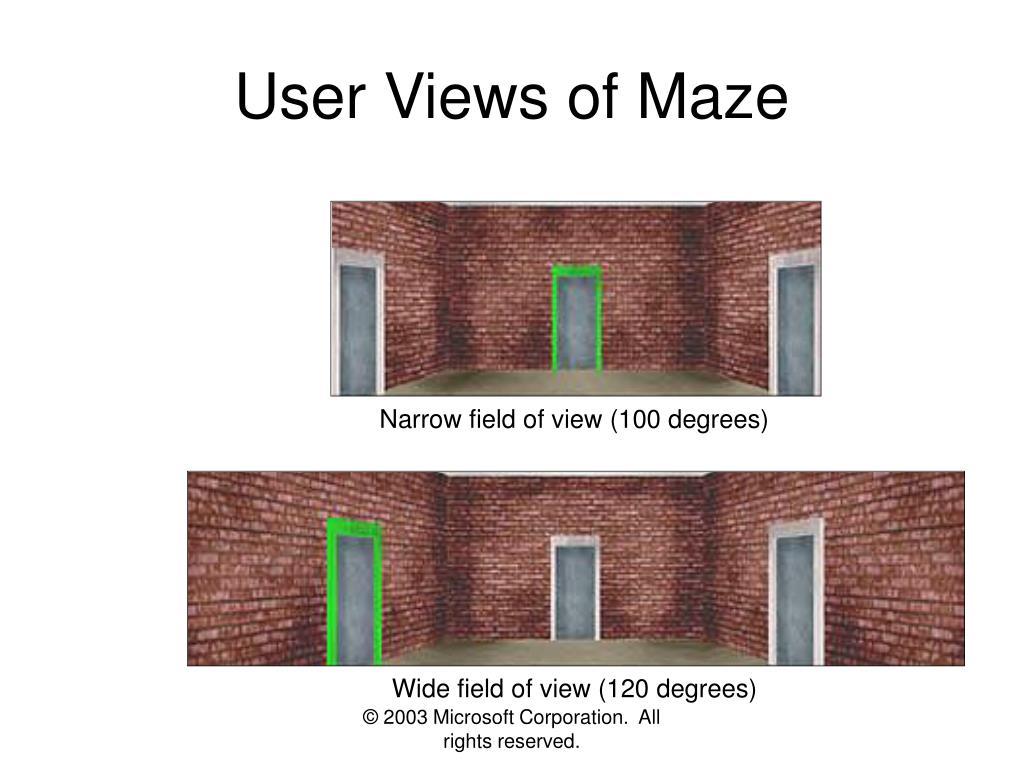 User Views of Maze